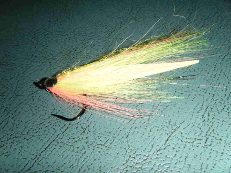 Pipam forum fly fishing club greygoose bereguardo pv for Fly fishing clubs
