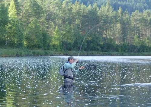 Comprare una pesca invernale di tenda