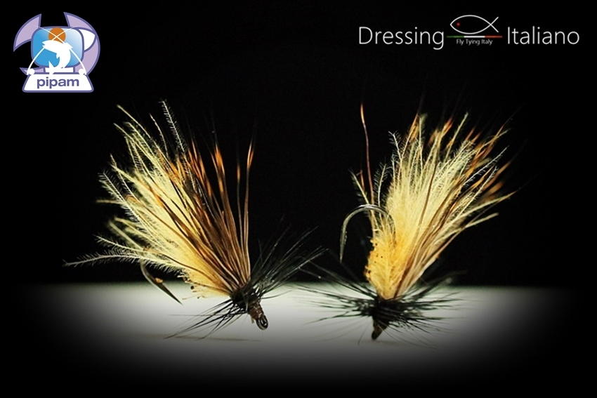 Brown sedge cdc di